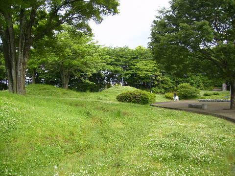 犬の散歩26.JPG