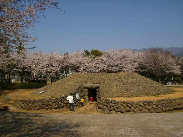 古墳と桜50