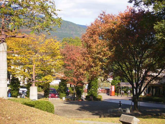 秋の古墳公園31