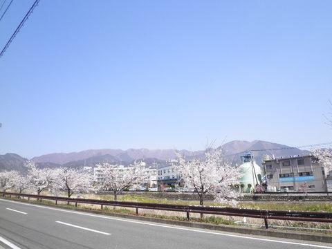 丹沢方面34.JPG