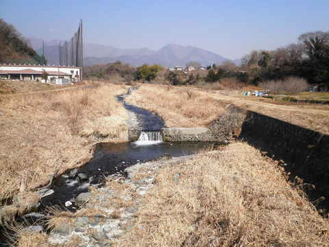 冬の四十八瀬川52.JPG