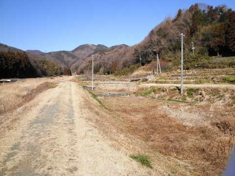 冬の土手道152.JPG