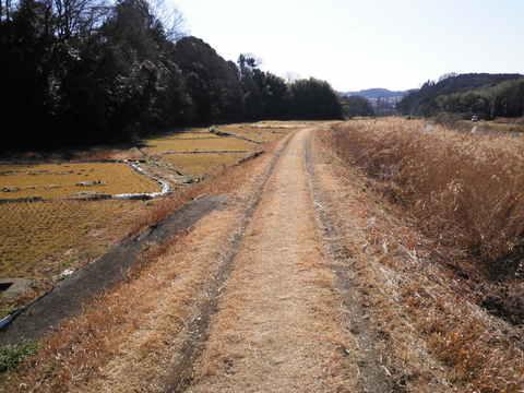 冬の土手道159.JPG