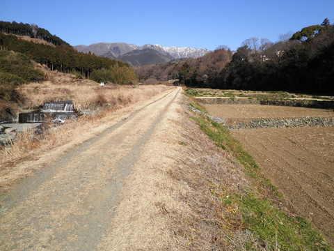 冬の土手道163.JPG