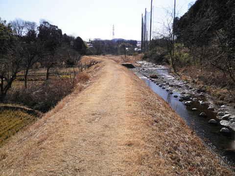 冬の土手道177.JPG
