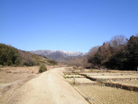 冬の土手道180.JPG