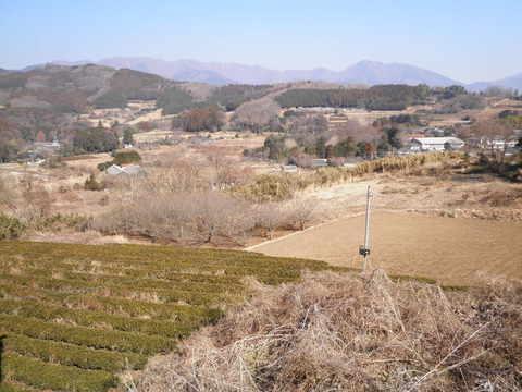 冬の柳川盆地27.JPG