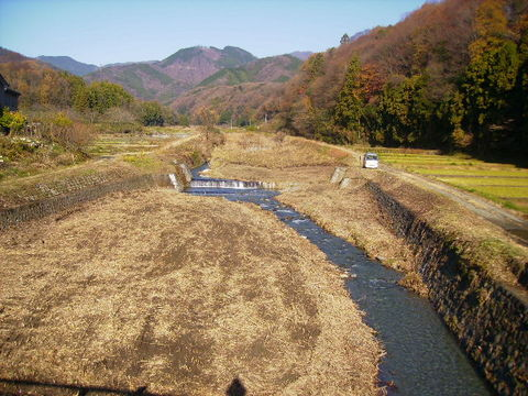 初冬の四十八瀬川34.JPG