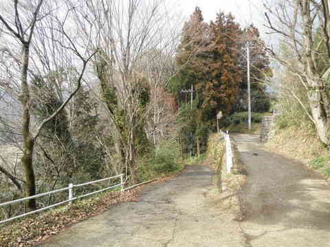 初春の下り道21.JPG