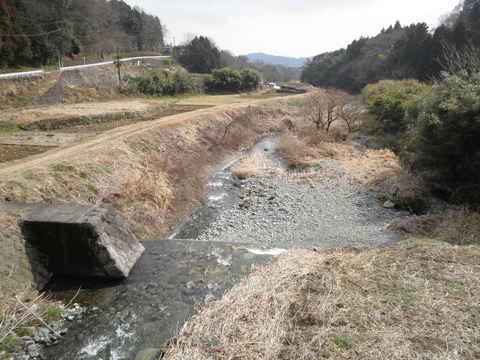 初春の四十八瀬川43.JPG