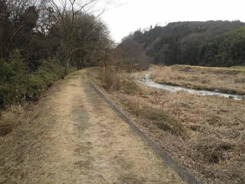 初春の河原58.JPG