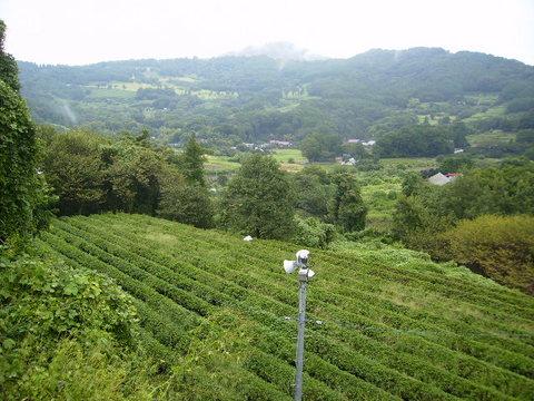 初秋の柳川盆地23.JPG