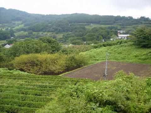 初秋の柳川盆地24.JPG