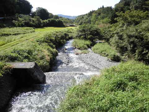 四十八瀬川16.JPG