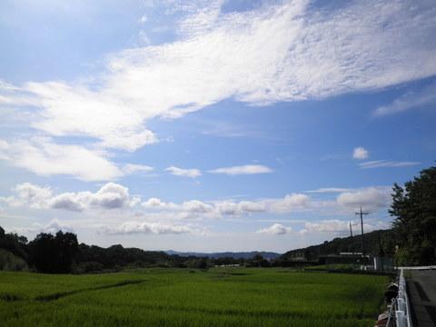 夏の雲16.JPG