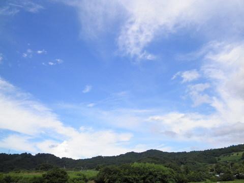 夏の青空47.JPG