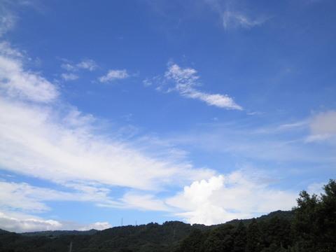 夏の青空63.JPG