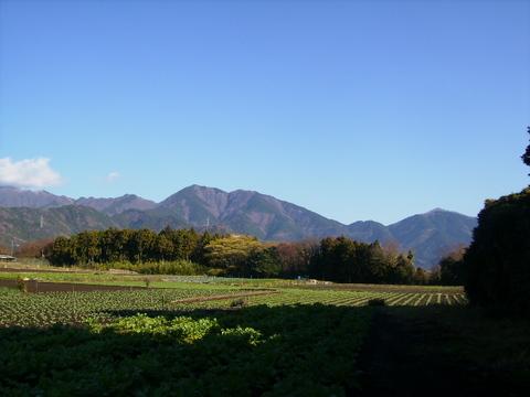 大山方面24.JPG