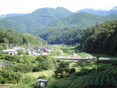 才戸橋を望む02.JPG