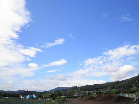 晩夏の青空10.JPG
