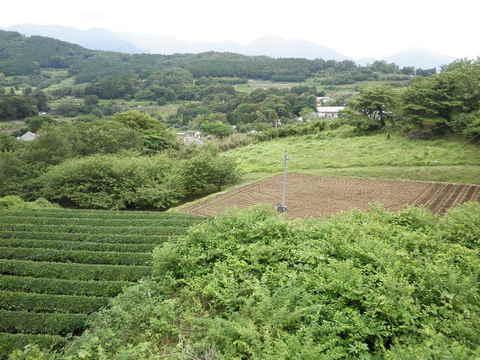 柳川盆地39.JPG