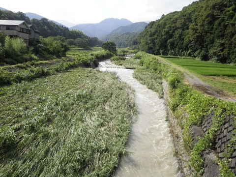 濁流の四十八瀬川57.JPG