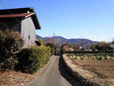 田舎道131.JPG