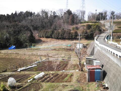 畑と坂道09.JPG