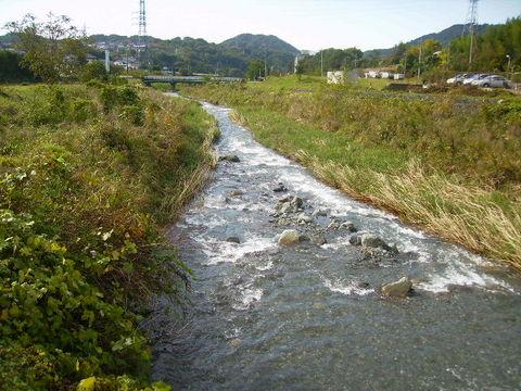 秋の四十八瀬川39.JPG