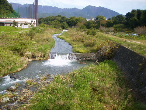 秋の四十八瀬川43.JPG