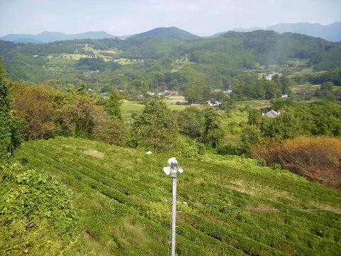 秋の柳川盆地28.JPG