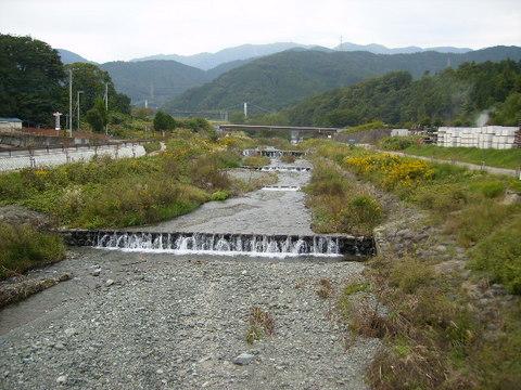 秋の水無川136.JPG