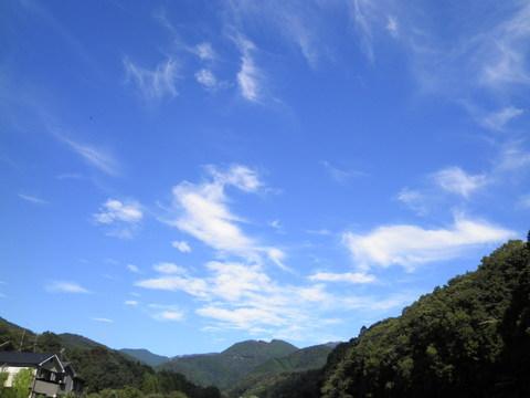 秋の青空15.JPG