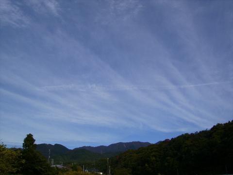 秋の青空16.JPG