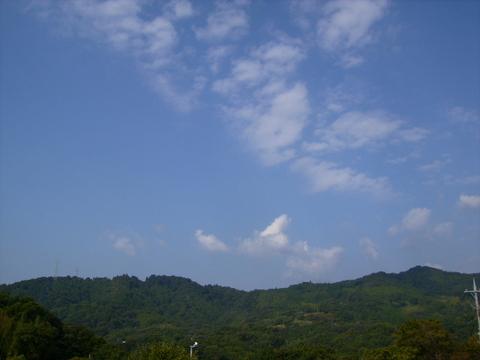 秋の青空31.JPG