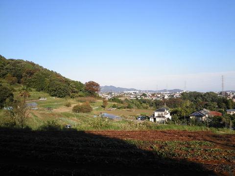 秋の青空88.JPG
