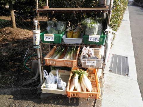 野菜売り場64.JPG