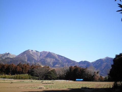 雪の三の塔127.JPG