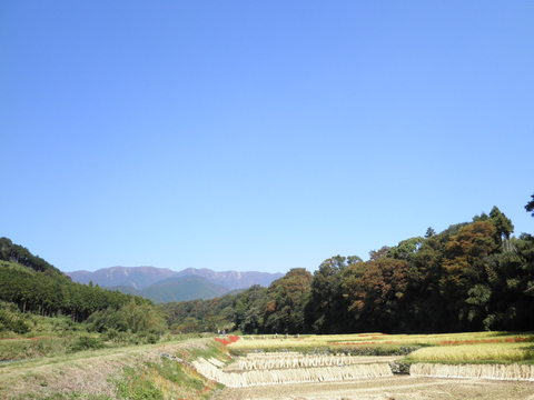 青空と土手道102.JPG